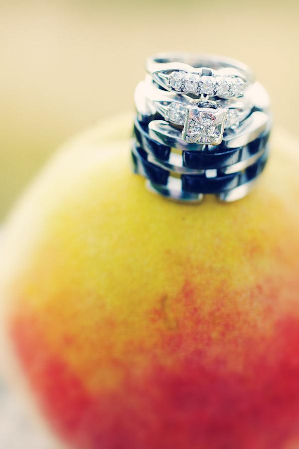 Peach_Orchard_Wedding_2308
