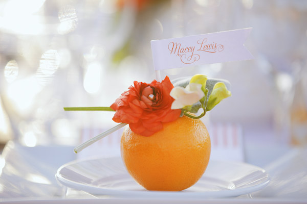 orange-spring-entrada-photos-5815