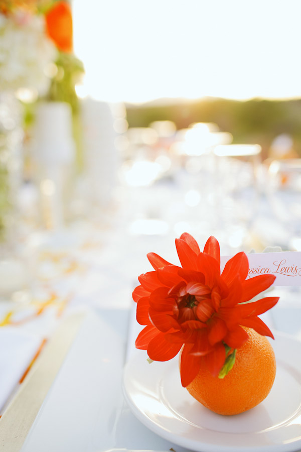 orange-spring-entrada-photos-5819