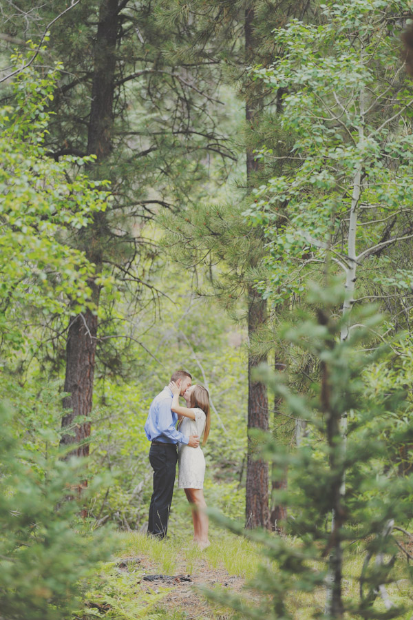pine-valley-forest-engagement-7460