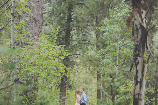 pine-valley-forest-engagement-7463