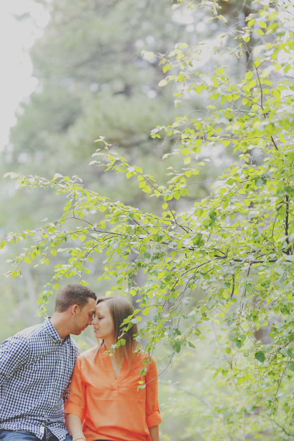 pine-valley-forest-engagement-7471