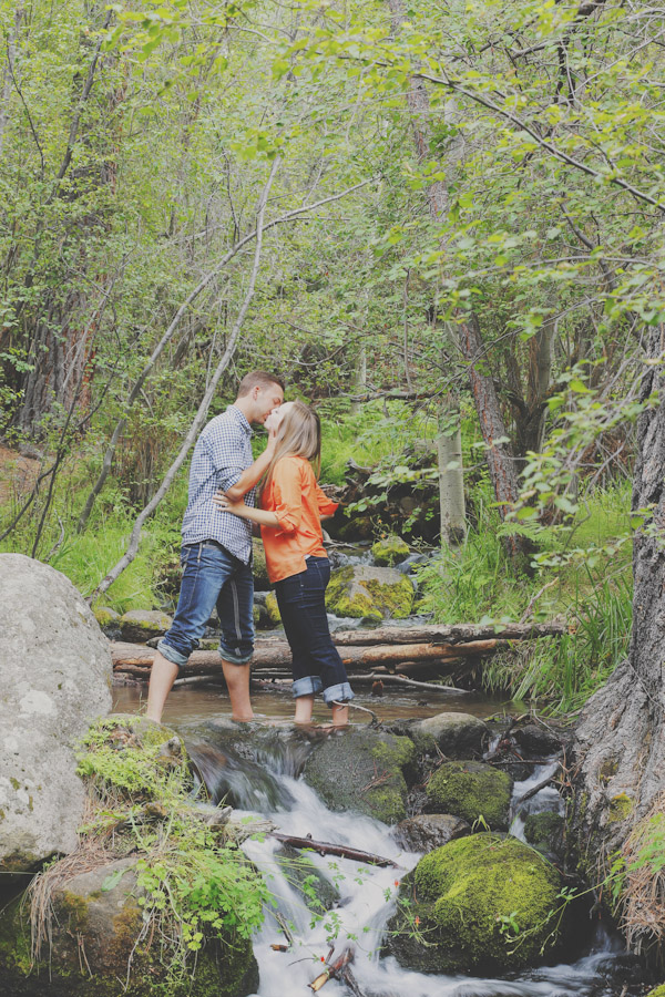 pine-valley-forest-engagement-7473