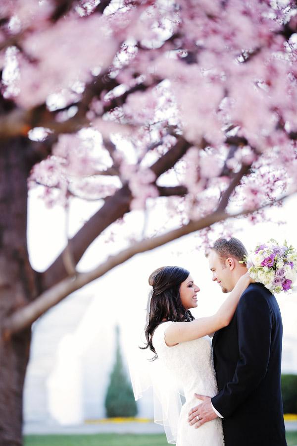 saint-george-wedding-photos-7234