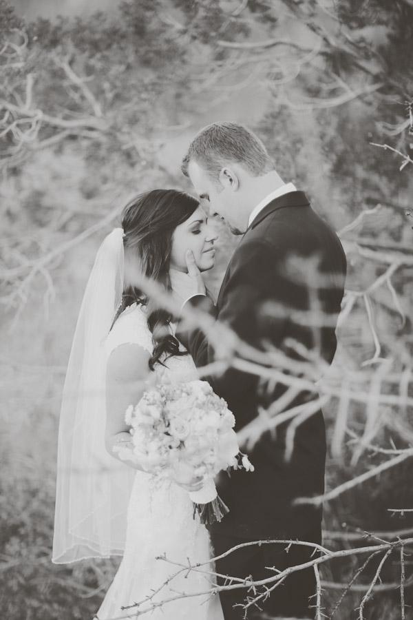 saint-george-wedding-photos-7249