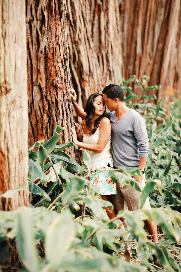 anna-ranch-hawaii-engagement-photos-0396