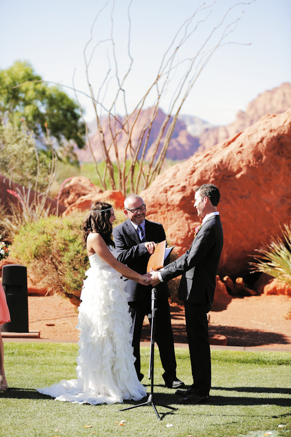 steve-masefield-zion-officiant-wedding1486