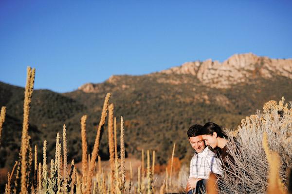 pine-valley-utah-engagement-photos-2406
