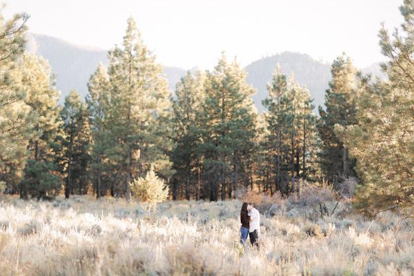 pine-valley-utah-engagement-photos-2416