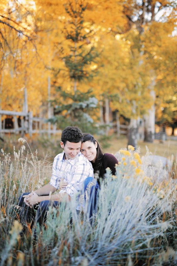 pine-valley-utah-engagement-photos-2430