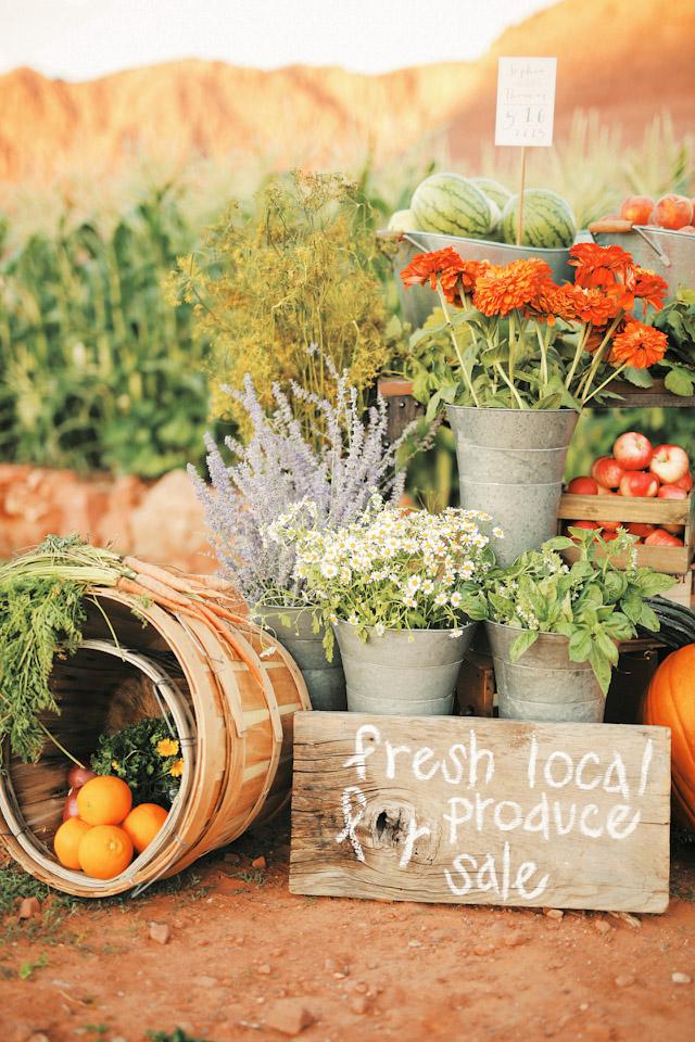farm-fresh-organic-wedding-gideon-0715