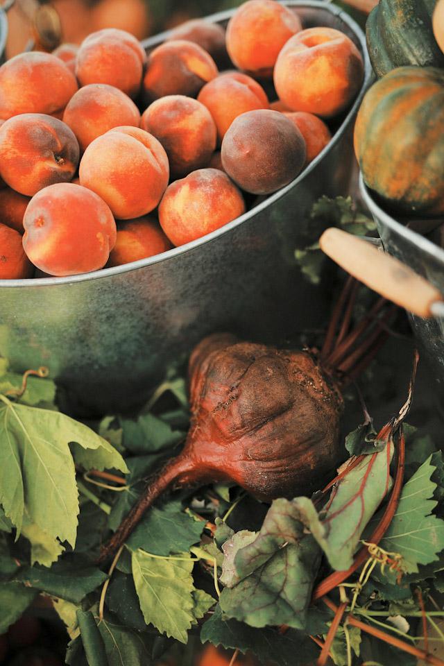 farm-fresh-organic-wedding-gideon-0717
