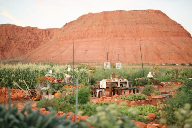 farm-fresh-organic-wedding-gideon-0730