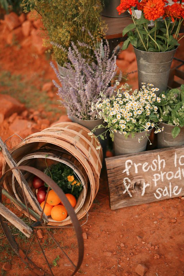 farm-fresh-organic-wedding-gideon-0731