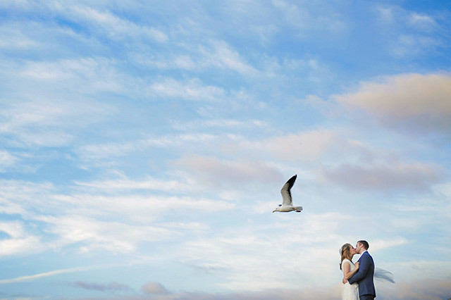 la-jolla-cove-wedding-photos-seagul-0781