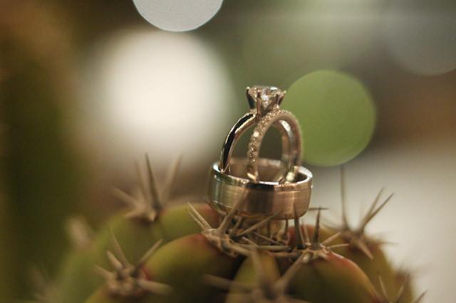 phoenix-botanical-garden-wedding-photographer-0691