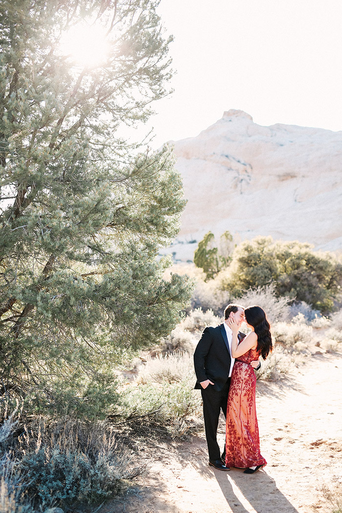 white-rock-utah-engagement-photos-1086