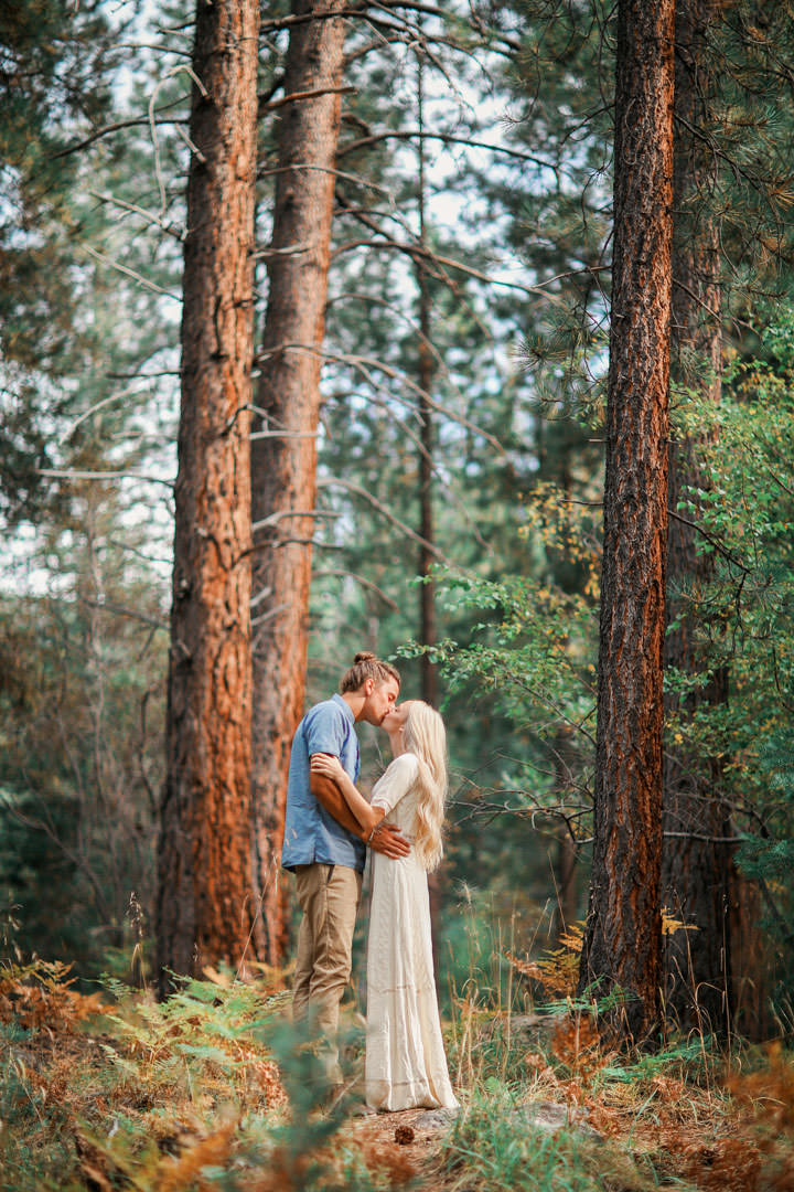 pine-valley-utah-engagement-photo-9399