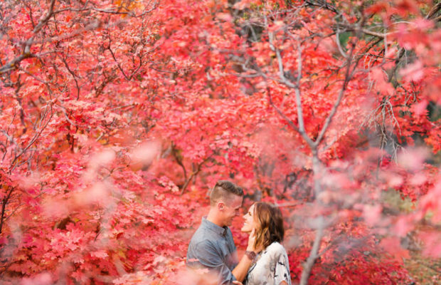 red-fall-leaves-engagement-photos-9950