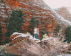 zion-snow-engagement-photos-1420